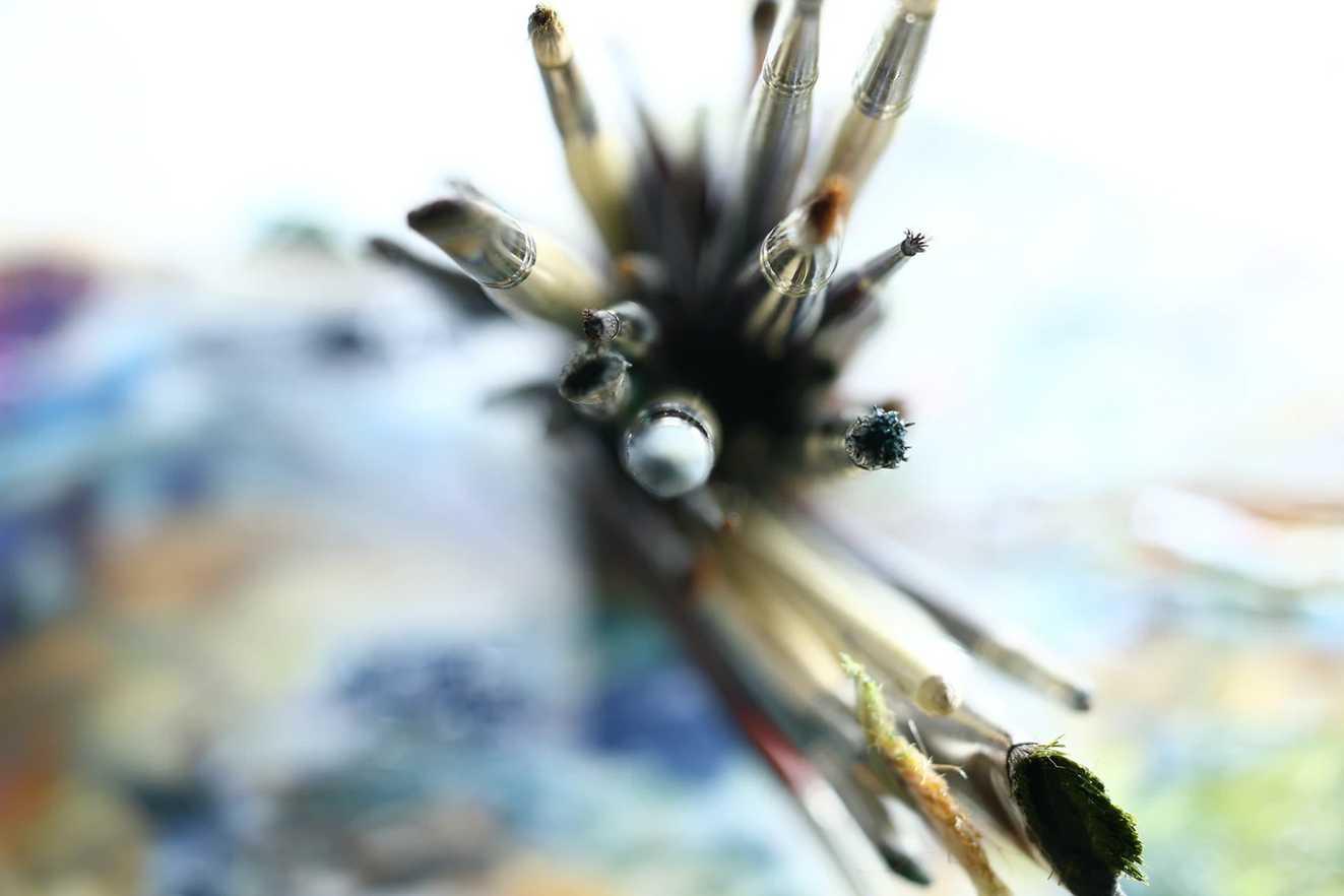 Jak redit olejove a akrylove barvy